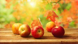 apple-fruit-harvest